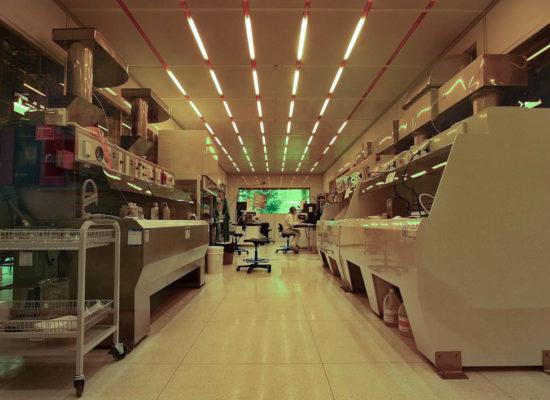 cleanroom fabrication facility